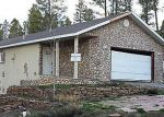 Bank Foreclosure for sale in Leadville 80461 COMSTOCK CT - Property ID: 2765716155