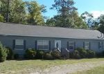 Bank Foreclosure for sale in Indian River 49749 EASTWAY DR - Property ID: 3834153736