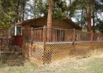 Bank Foreclosure for sale in Bailey 80421 QUAKIE WAY - Property ID: 3968689263