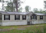 Bank Foreclosure for sale in Naylor 31641 UPPER GRAND BAY RD - Property ID: 4007342217