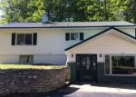 Bank Foreclosure for sale in Manistique 49854 DODGE LAKE RD - Property ID: 4037393820