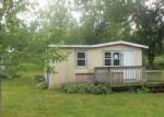 Bank Foreclosure for sale in Wabasha 55981 MAIN ST E - Property ID: 4041800258