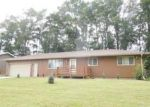 Bank Foreclosure for sale in Sidney 51652 BIRCH ST - Property ID: 4045802923