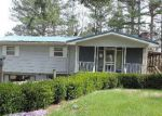Bank Foreclosure for sale in Ellington 63638 SKYVIEW DR - Property ID: 4141116117