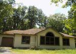 Bank Foreclosure for sale in Bushkill 18324 SEGATTI CIR - Property ID: 4156997952