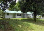Bank Foreclosure for sale in Pahoa 96778 KUMU ST - Property ID: 4205601215