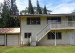 Bank Foreclosure for sale in Keaau 96749 2ND AVE - Property ID: 4219594943