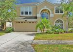 Bank Foreclosure for sale in Tampa 33647 STILL WIND DR - Property ID: 4224692964