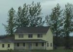 Bank Foreclosure for sale in Thief River Falls 56701 138TH AVE NE - Property ID: 4236518694