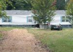 Bank Foreclosure for sale in Hornbeak 38232 WILLIAMS RD - Property ID: 4237546618