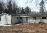 Bank Foreclosure for sale in Houghton Lake 48629 TRESCOTT LN - Property ID: 4262574189