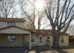 Bank Foreclosure for sale in Alamosa 81101 E 2ND ST - Property ID: 4266686335