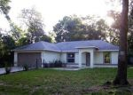 Bank Foreclosure for sale in Ocala 34480 JUNIPER TRL - Property ID: 4270423574