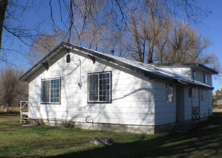Foreclosed Home ID: 03587351891
