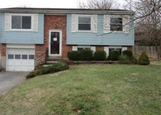 Foreclosed Home ID: 04111817416