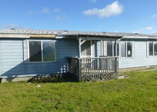 Foreclosed Home ID: 04147069958