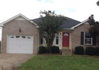 Foreclosed Home ID: 04213317896