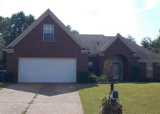 Foreclosed Home ID: 04213689286