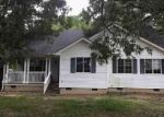 Foreclosure Auction in Burgess 22432 JESSIE DUPONT MEMORIAL HWY - Property ID: 1718542679