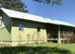 Foreclosure Auction in Gordo 35466 JESSIE WHITE RD - Property ID: 1719527685