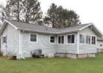 Bank Foreclosure for sale in Iron River 49935 IRON LAKE RD - Property ID: 4142734438