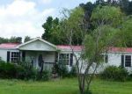 Bank Foreclosure for sale in Rich Square 27869 BLAKE DR - Property ID: 4192214999