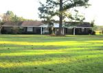 Bank Foreclosure for sale in Repton 36475 HIGHWAY 136 E - Property ID: 4223998774