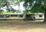 Bank Foreclosure for sale in Nicholls 31554 S MEADOW DR - Property ID: 4262175647