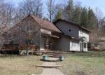 Bank Foreclosure for sale in Honor 49640 DEADSTREAM RD - Property ID: 4268365531