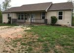 Bank Foreclosure for sale in Plato 65552 HERITAGE LN - Property ID: 4273505598