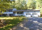 Bank Foreclosure for sale in Sparrow Bush 12780 PEENPACK TRL - Property ID: 4280145270