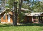 Bank Foreclosure for sale in Hill City 55748 LAKE AVE W - Property ID: 4288701539