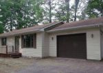 Bank Foreclosure for sale in Alanson 49706 BANWELL RD - Property ID: 4301488631