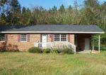 Bank Foreclosure for sale in Willard 28478 WILLARD RD - Property ID: 4306070718