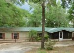 Bank Foreclosure for sale in Chipley 32428 MOSQUITO RD - Property ID: 4311555908