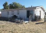 Bank Foreclosure for sale in Lovelock 89419 N MERIDIAN RD - Property ID: 4313582401