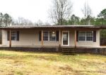 Bank Foreclosure for sale in Nauvoo 35578 FLORA DR - Property ID: 4344082474