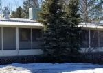 Bank Foreclosure for sale in Lakeside 85929 GRAHAM DR - Property ID: 4388827652