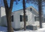 Bank Foreclosure for sale in Luther 49656 MAPLE ST - Property ID: 4462908763
