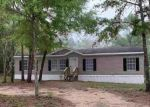 Bank Foreclosure for sale in Marianna 32448 SILVER LK N - Property ID: 4465933400