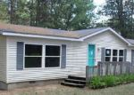 Bank Foreclosure for sale in Grayling 49738 RUSTIC LN - Property ID: 4499521189