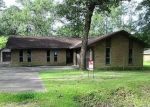 Bank Foreclosure for sale in Lumberton 77657 HILLCREST ST - Property ID: 4503208949