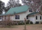 Bank Foreclosure for sale in Lee 32059 SE CARPETBAGGER TRL - Property ID: 4523378519
