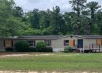 Bank Foreclosure for sale in Middleburg 32068 GRAPE CT - Property ID: 4524254912
