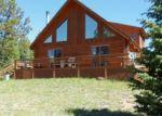 Pre Foreclosure in Cripple Creek 80813 MARIPOSA CIR - Property ID: 1005503493