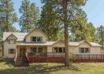 Pre Foreclosure in Durango 81303 SHENANDOAH TER - Property ID: 1066630200