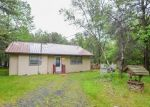 Pre Foreclosure in Blakeslee 18610 HEATHER DR - Property ID: 1808722394