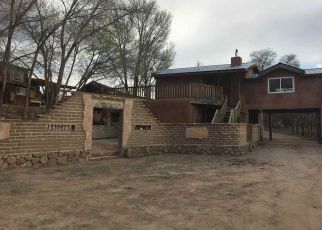 Foreclosed Home ID: 04124074560