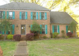 Foreclosed Home ID: 04278018475