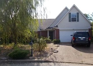Foreclosed Home ID: 04281668104